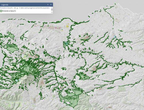 """Piano Paesaggistico Regionale: pubblicazione progressiva """"Foreste e boschi"""""""