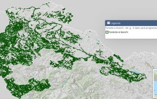 foreste-boschi
